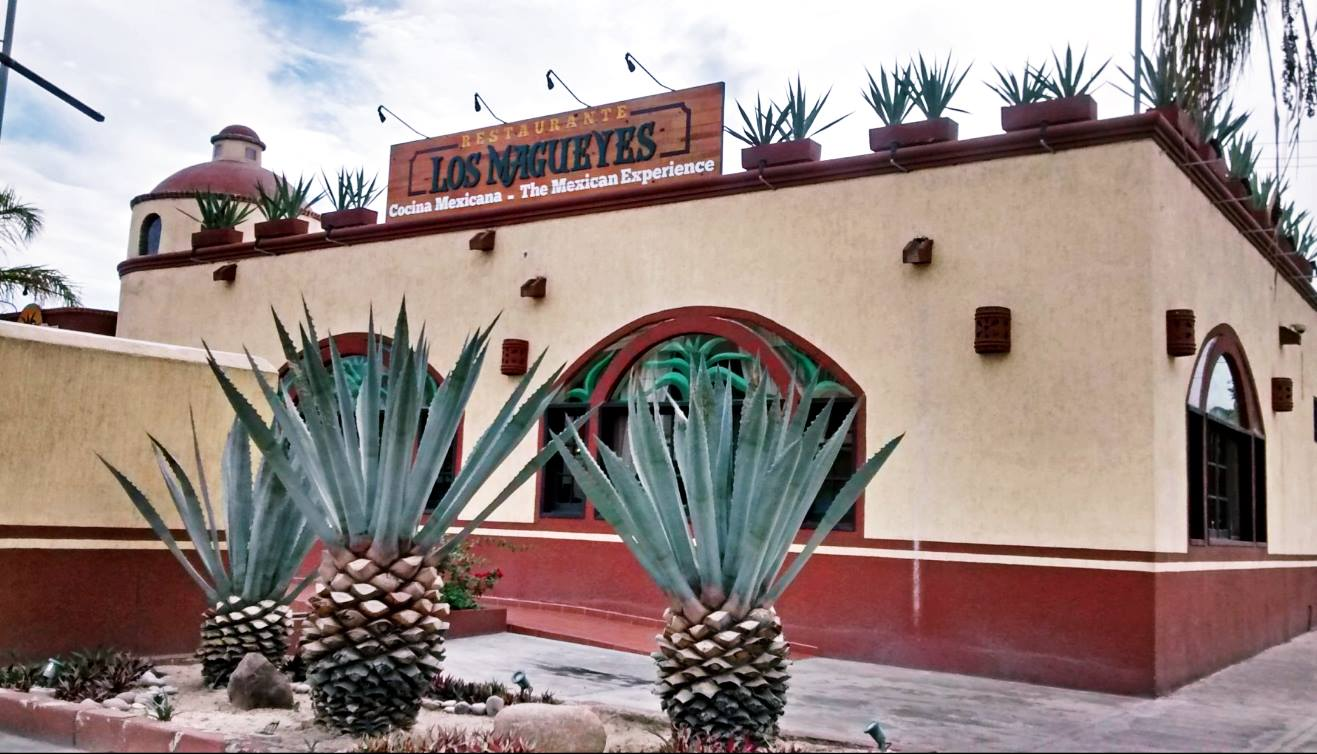 magueyes